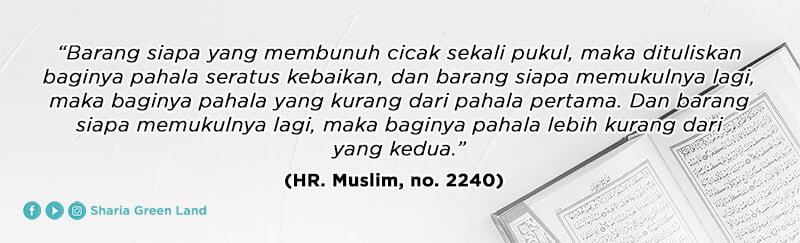 (HR. Muslim, no. 2240) Cara Mengusir Cicak