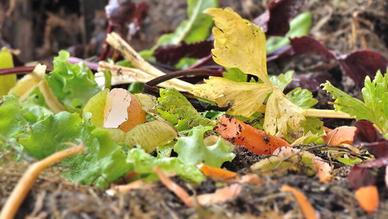 potong sampah organik untuk membuat pupuk kompos